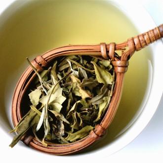 Beyaz Çayın Zayıflamaya Faydaları